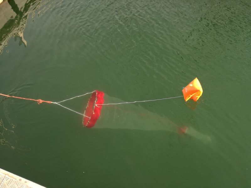 Filet à ichtyoplancton - simple arceau IMG 20170902 175655 1.jpg