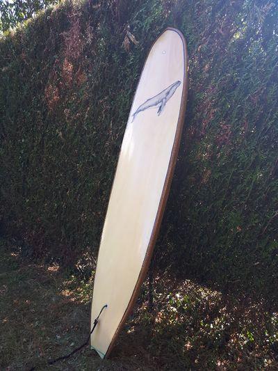 Surf_en_bois_(hollow)_20180726_164953.jpg