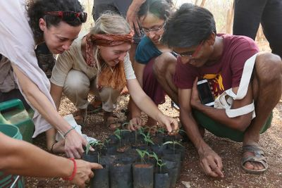 Tree_planting_(Aranya_Agricultural_Alternatives_method)_SIY-TS-20-006-TreePlantingAranyaMethod-Pic001.jpg