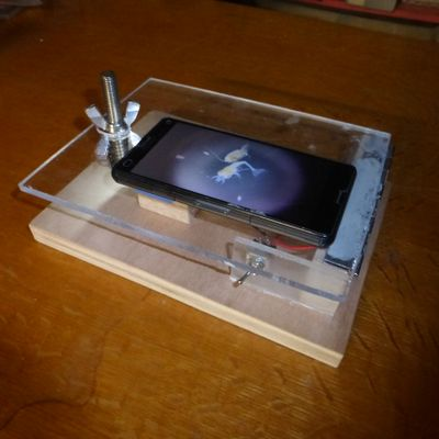 Microscope_fonctionnant_avec_un_smartphone_P1010983.JPG