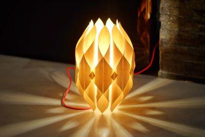 Lampe_Organ_Attachment-1.jpeg